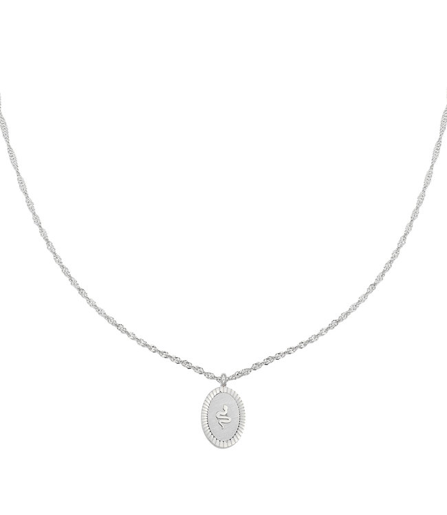Silver Snake Coin Necklace