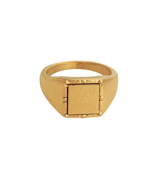 Gold Head up Signet Ring