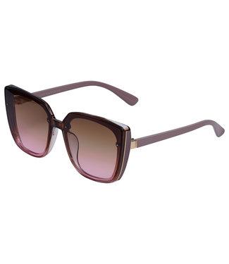 Big Frame Sunglasses