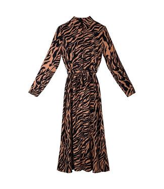 Zebralicious Maxi Dress
