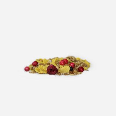 Granola* - bosvruchten & cornflakes