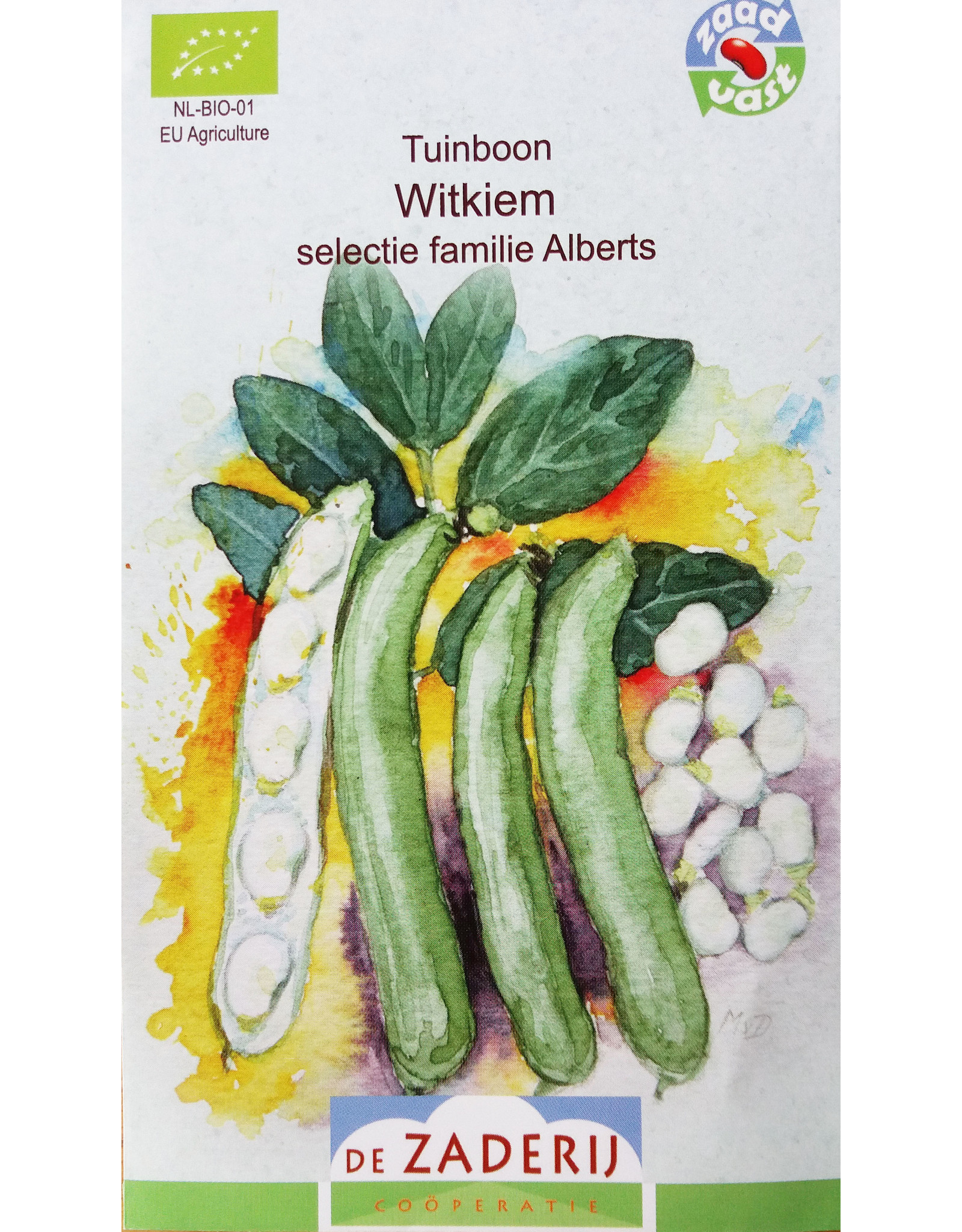 Tuinboon Witkiem selectie familie Alberts