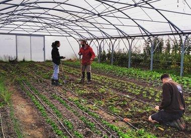 LOT – Leren Ondernemen in de Tuinbouw (Warmonderhof)