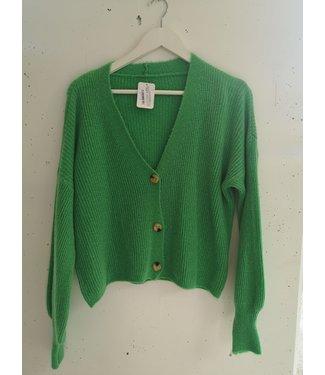Cardigan short 3 button, Grass green