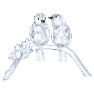 Swarovski Brilvogels 5249843