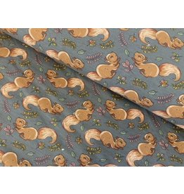 Jersey Motiv Eichhörnchen grau