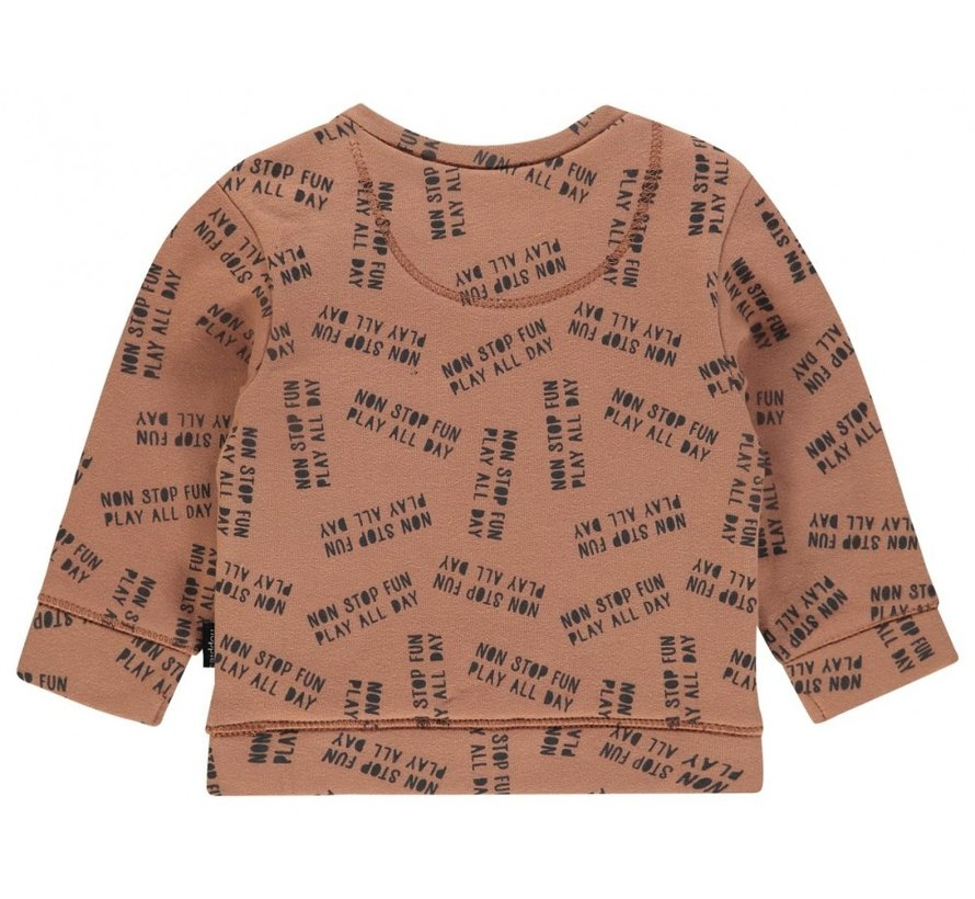 Noppies Sweater Pascoe Washed Wood-56