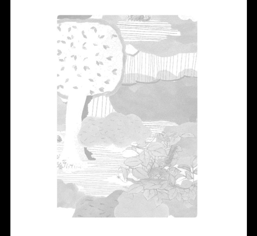 Snoozebaby Wieg- en Ledikant deken | Star White