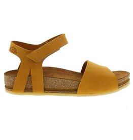 Loints Jazz 65000 396 yellow