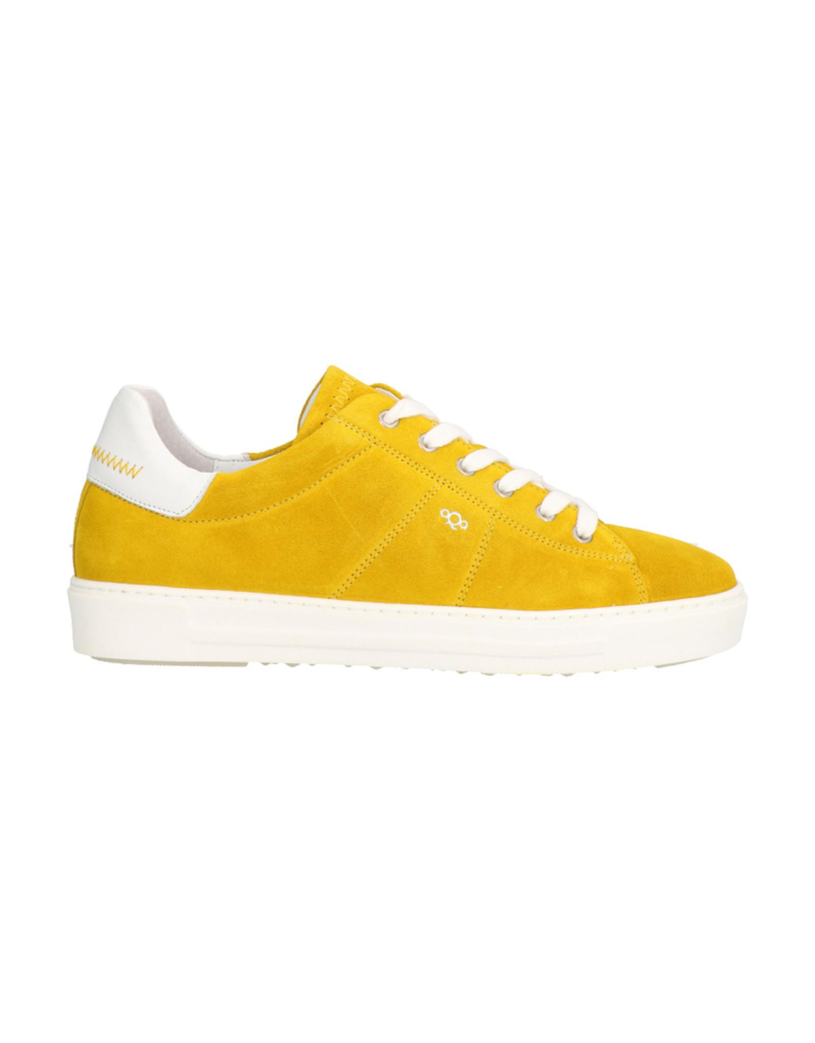 aqa A7201 F13 A11 Yellow