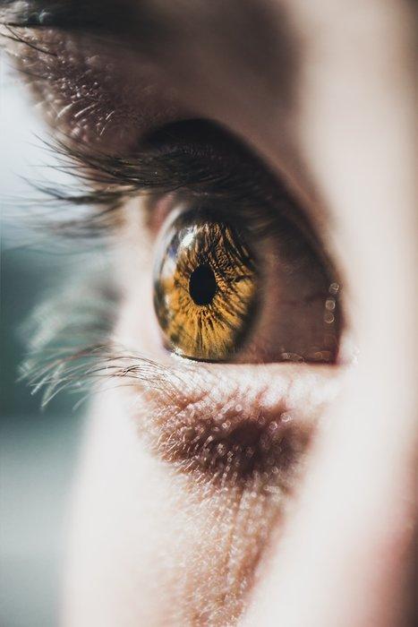 Vitalstoffe für die Augen