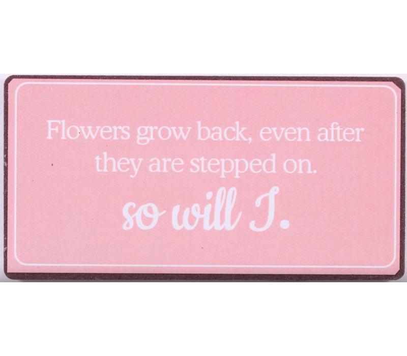 Flowers grow back, even after they are stepped on. So will I