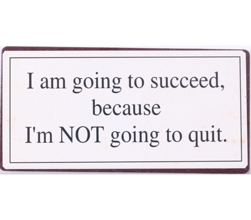 I am going to succeed because I'm NOT going to quit