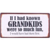 If I had known grandkids were so much fun, I would have had them first.