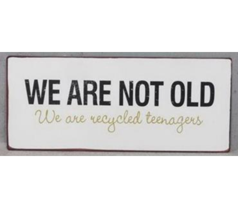 We are not old, we are recycled teenagers