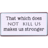 That which does not kill us makes us stronger