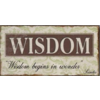 Wisdom begins in wonder - Socrates