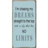 I'm chasing my dreams straight to the top into a sky that has no limits