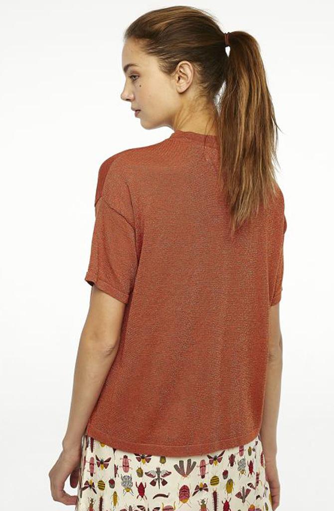 Danita t-shirt  Brown Chili-3