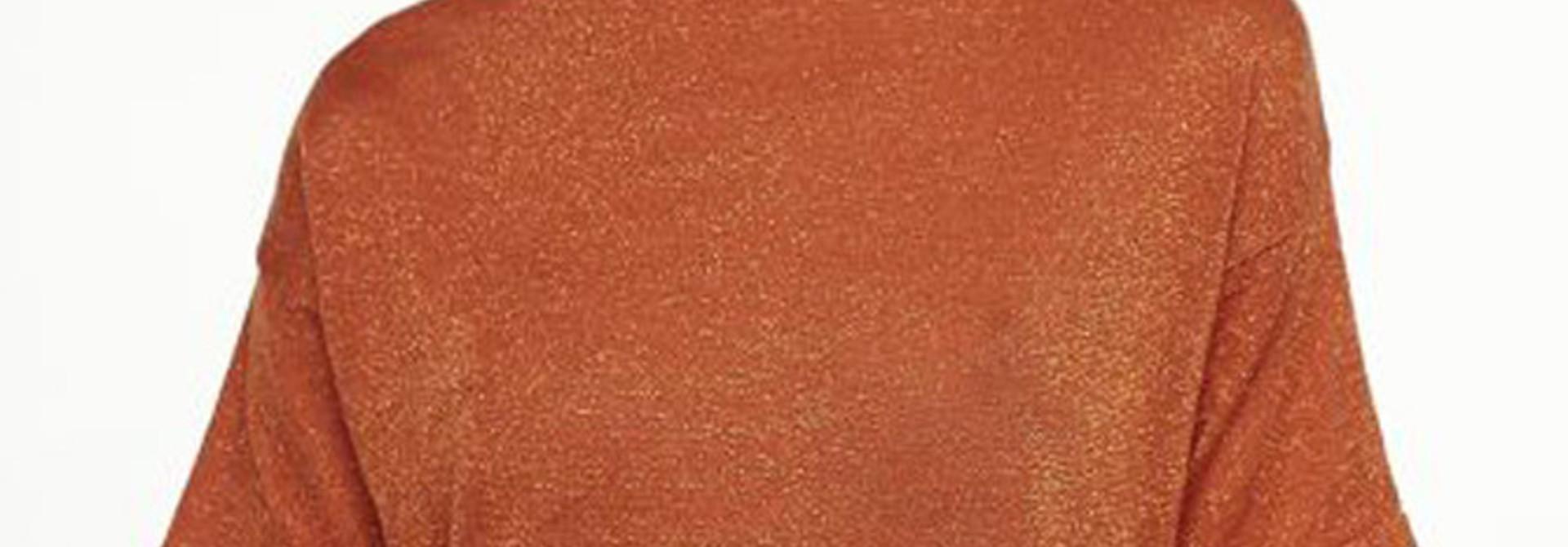 Danita t-shirt  Brown Chili