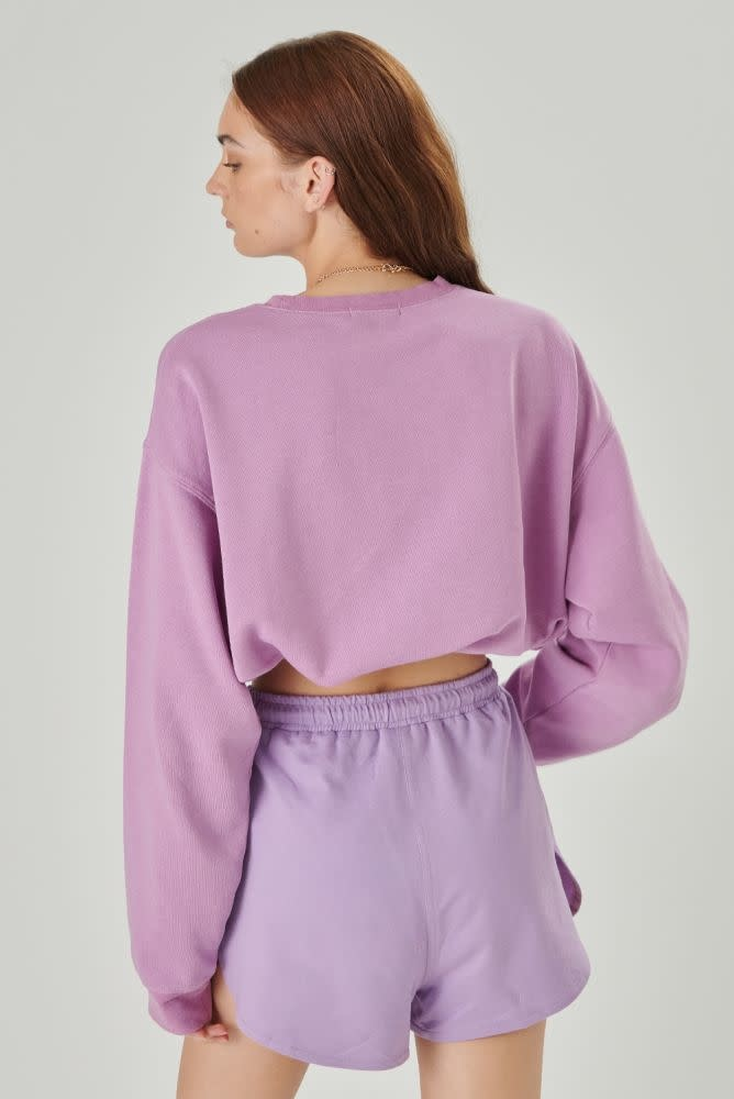 Courage cropped sweater Lila-4