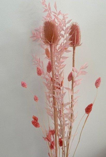 Dryflower little bouquet 'Pink Cloud'