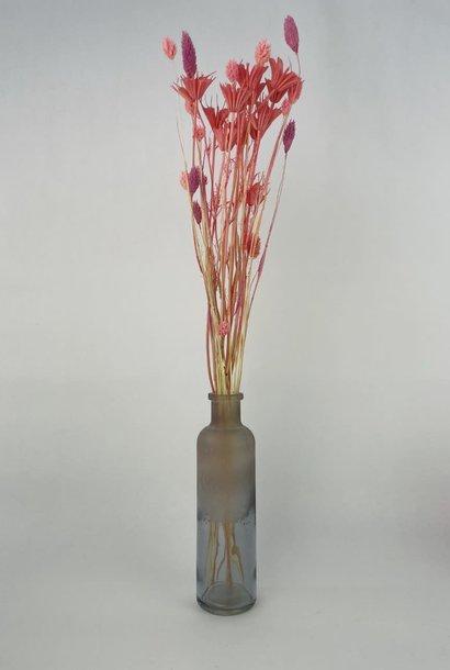 Bottle vase moira XS Iced Black