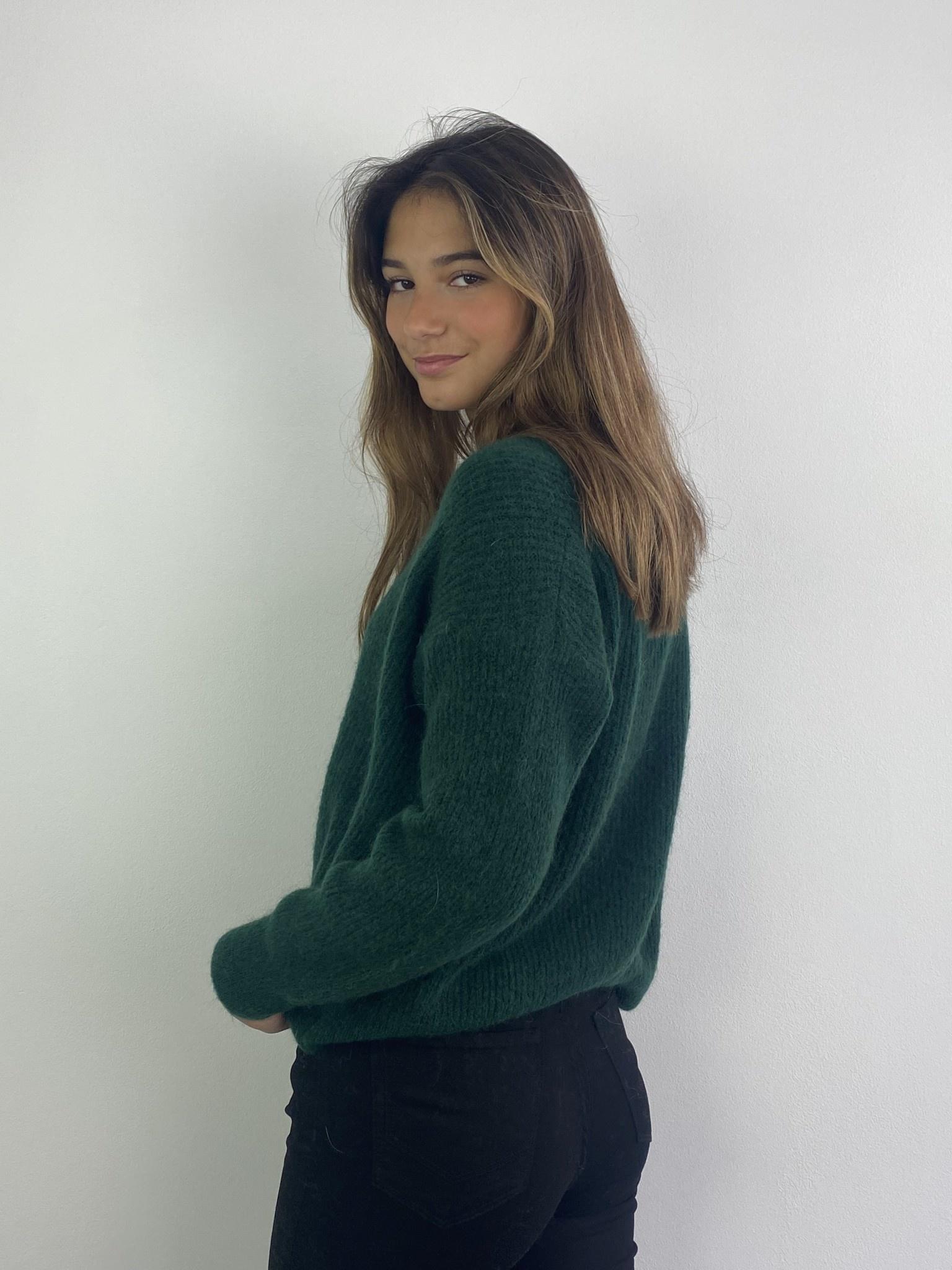 Louna v-neck knitted pull Pine-3