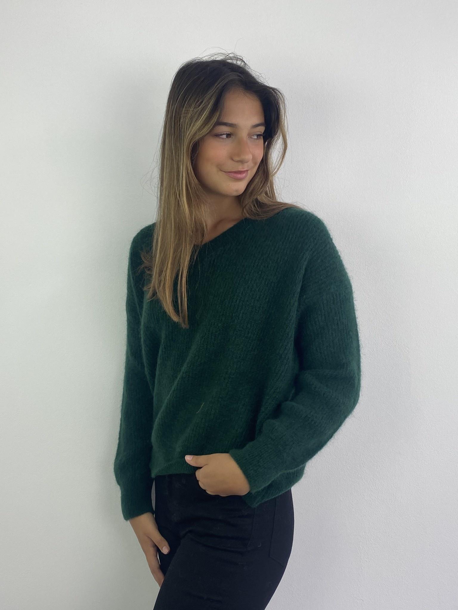 Louna v-neck knitted pull Pine-1