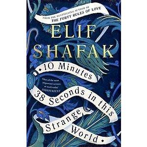 Elif Shafak 10 Minutes 38 Seconds In This Strange World