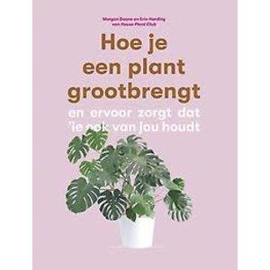 Morgane Doane Hoe je een plant grootbrengt