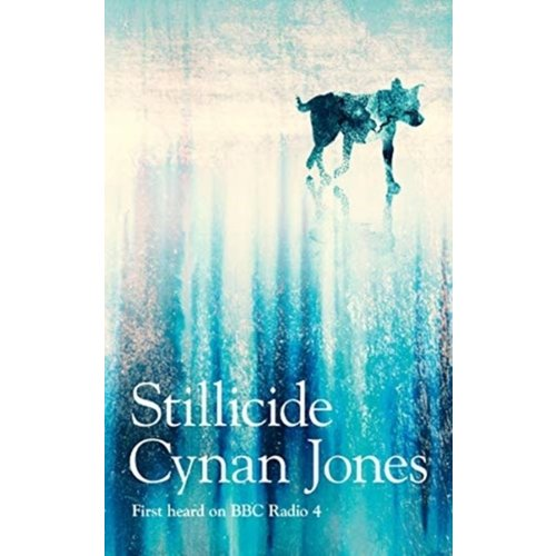 Cynan Jones Stillicide
