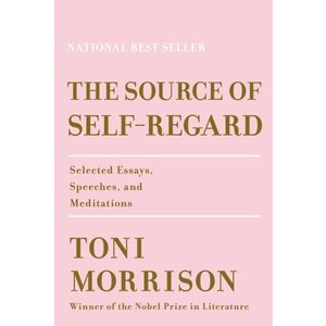 Toni Morrison The Source of Self Regard