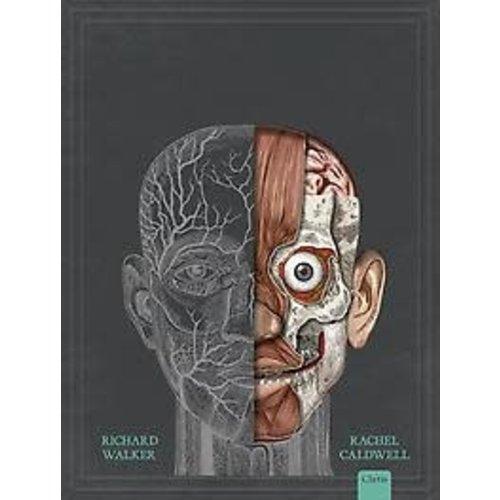 Het menselijk lichaam. Een pop-up anatomische gids