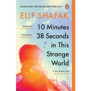 Elif Shafak 10 Minutes 38 Seconds In This Strange World