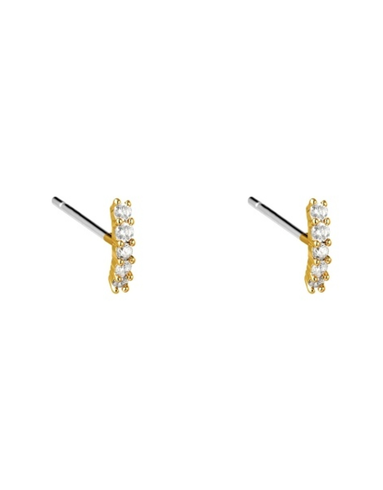 Earrings stripe