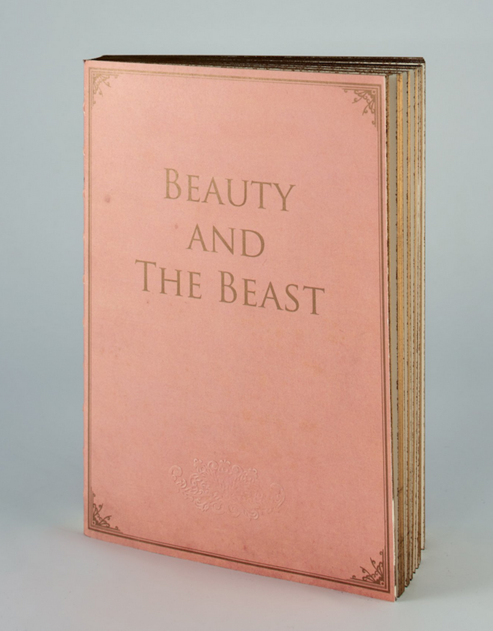 """Notebook """"Beauty and the beast"""""""