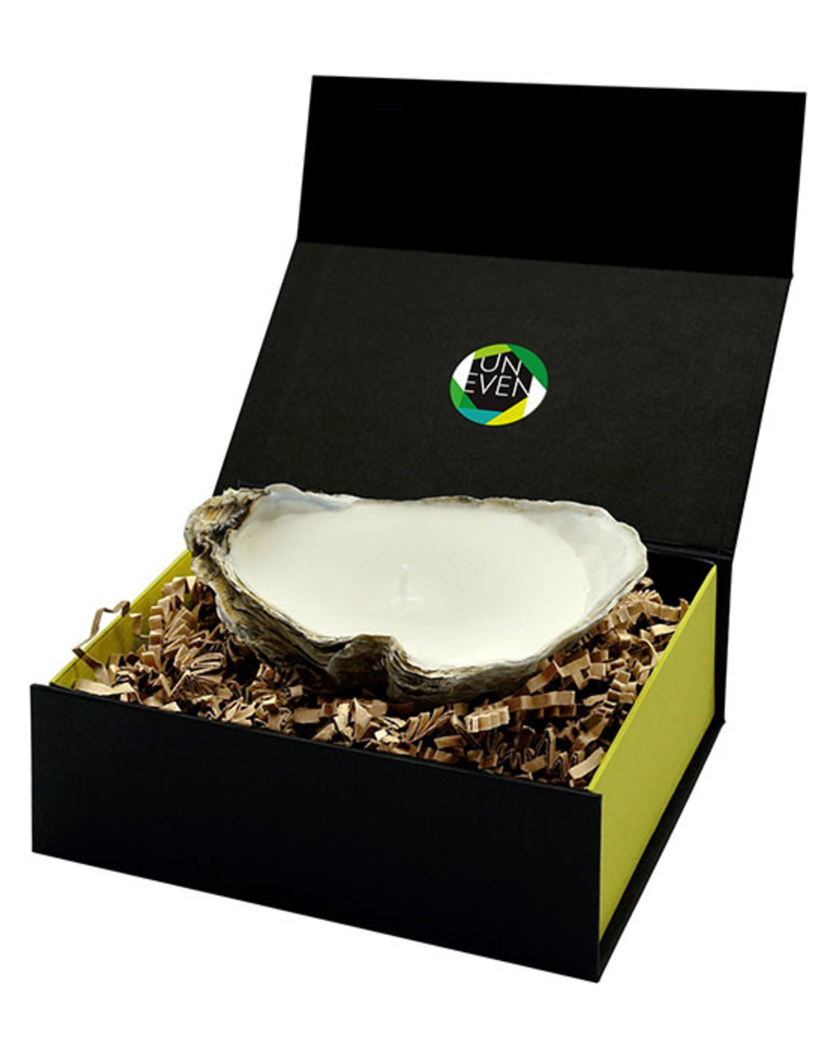 Oyster Candle Small