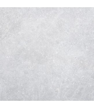 Gardenlux Cera4Line Mento Bluestone Light 100x100x4 cm