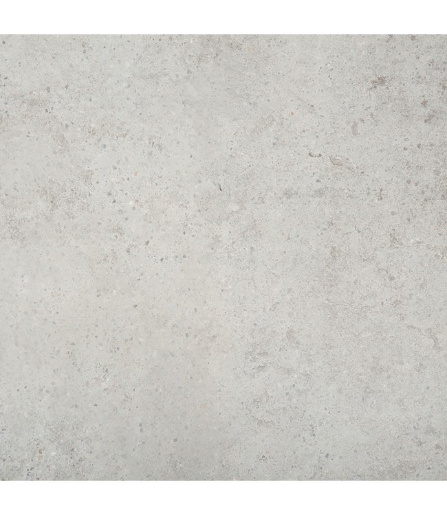 Gardenlux Ceramica Terrazza Gigant Silver Grey 59,5x59,5x2 cm (prijs per tegel)