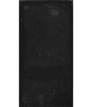 Gardenlux Betontegel Zwart 15x30x4,5 cm