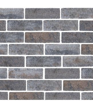 Gardenlux Waterpasserende Eco Bricks Maeslant 7x21x8 cm