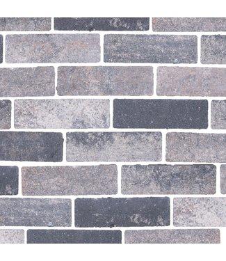 Gardenlux Waterpasserende Eco Bricks Veerse 7x21x8 cm