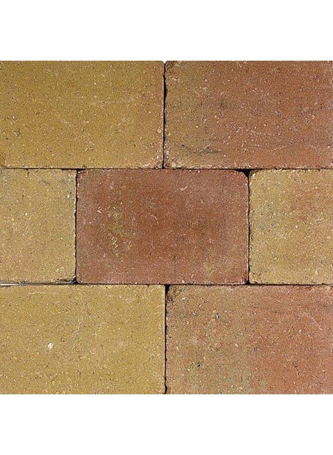 Pebblestones Lizard 20x30x6 cm (prijs per laag van 0,72m²)