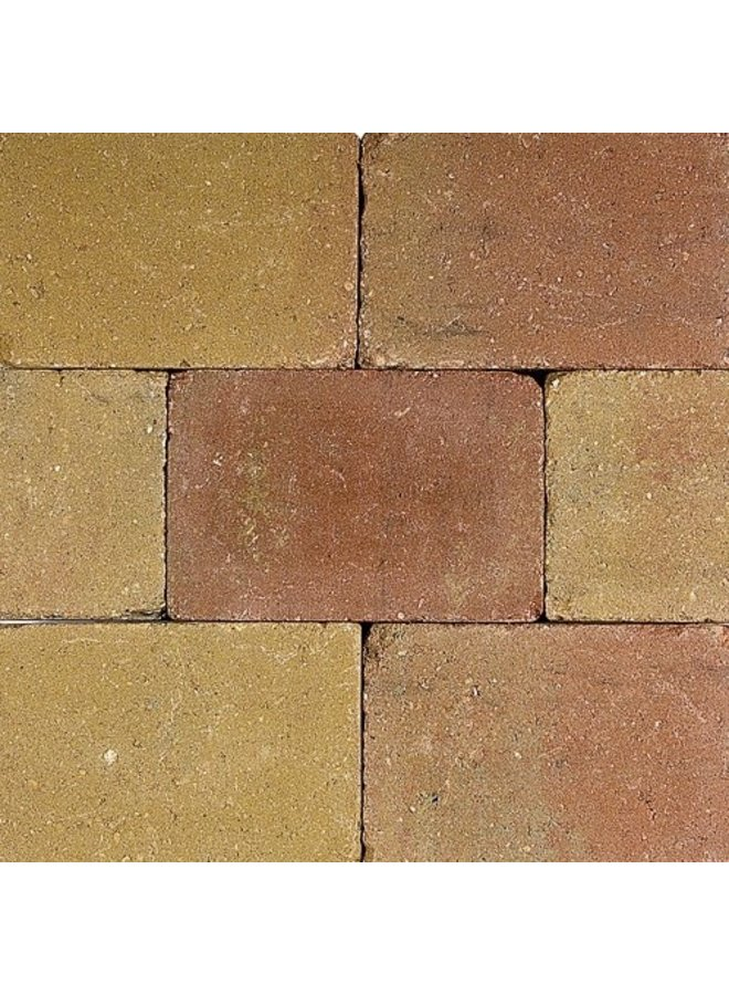 Pebblestones Lizard 15x20x6 cm (prijs per laag van 0,72m²)