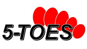 5-TOES I Hochwertige 5-Zehen Nylonstrumpfhosen