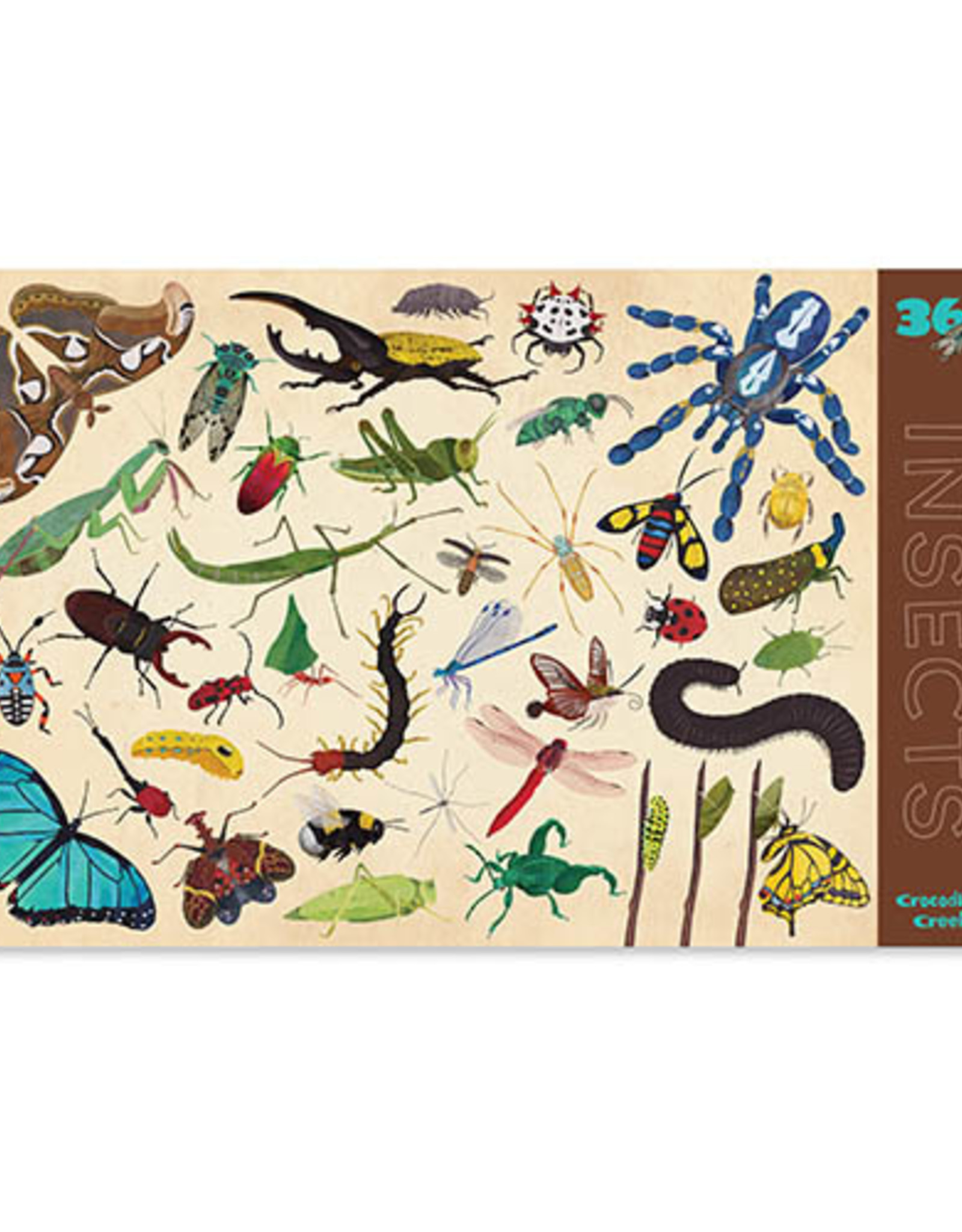 Crocodile Creek Placemat 36 Insects