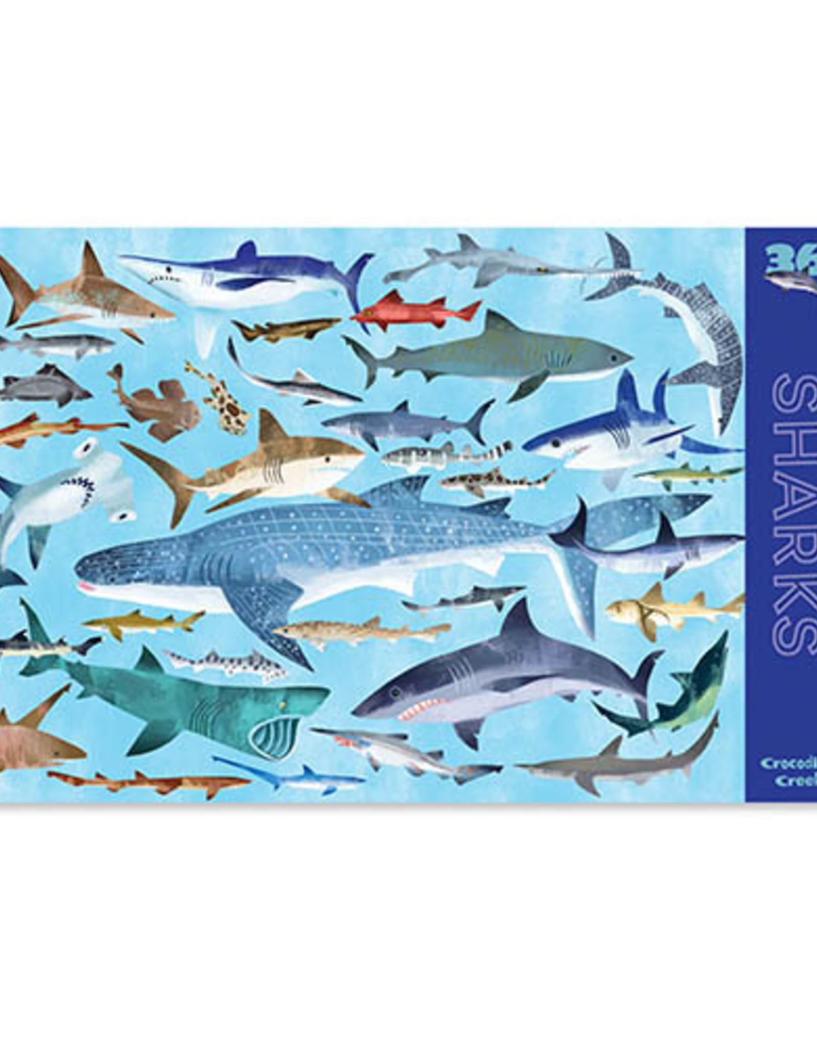 Crocodile Creek Placemat 36 Sharks