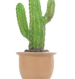 Lamp Vingercactus in bloempot