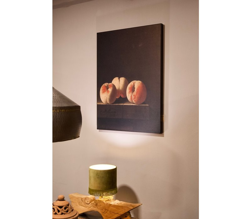 Paneel abrikozen Hamellton